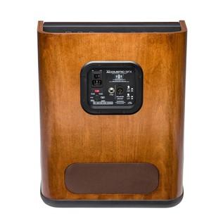 Fender Acoustic SFX Amplifier Back