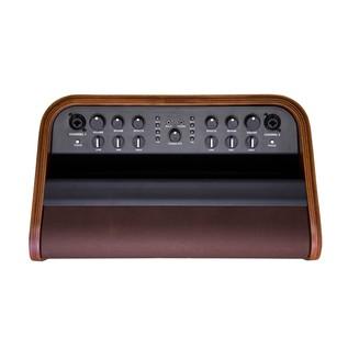 Fender Acoustic SFX Amplifier Top View