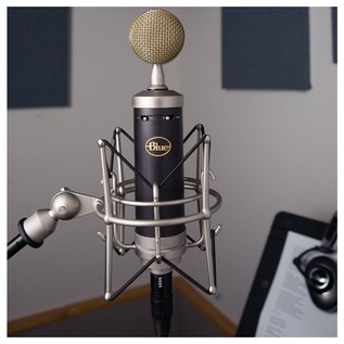 Blue Baby Bottle SL Vintage Microphone - Lifestyle