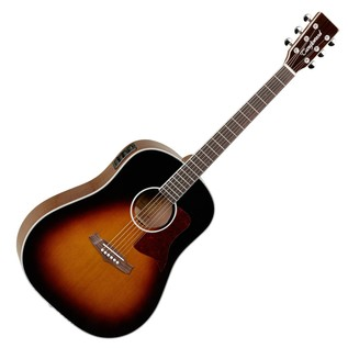 Tanglewood Sundance Performance Pro Dreadnought Electro Acoustic