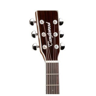 Tanglewood Sundance Performance Pro Dreadnought Electro Acoustic Neck
