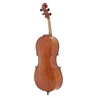 Eastman Master Cello Back