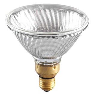 Sylvania Par 38 Lamp