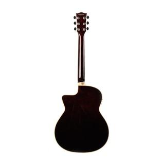 Eko NXT 018 CW EQ Electro Acoustic Guitar, Natural back