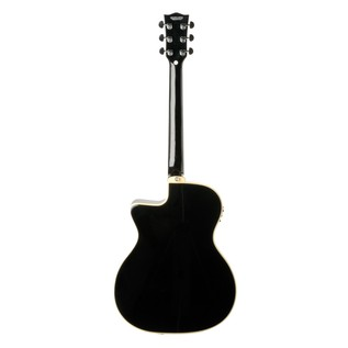 Eko NXT 018 CW EQ Electro Acoustic Guitar, Black Back