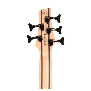 SR305E 5-String Bass Guitar, Autumn Fade Metallic