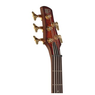 SR805 5-String Bass Guitar, Aged Whiskey Burst