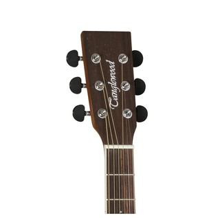 DBT D BW Discovery Dreadnought Acoustic Guitar