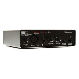 Steinberg UR-12 USB Audio Interface - Angled
