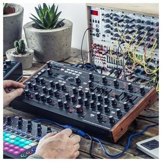Novation Peak Polyphonic Synthesizer - Lifestyle 1