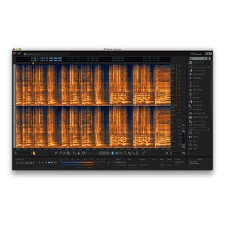 iZotope RX6 Audio Editor - Editor View