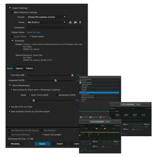 RX Loudness Control Plugin - Main Window