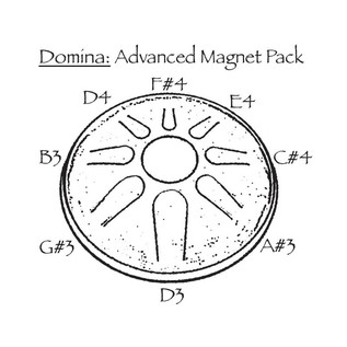 Idiopan Domina Advanced Magnet Pack