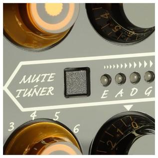 EVO 1 Amplifier Head