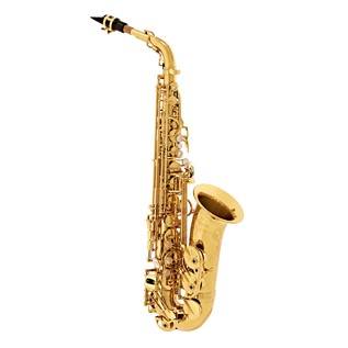 Yanagisawa AWO10 Alto Saxophone, Brass