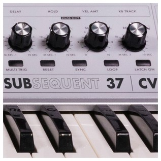Moog SUBsequent 37 CV Analog Synthesizer - Detail