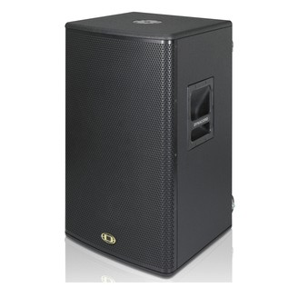 Dynacord PowerSub 212 Powered Subwoofer