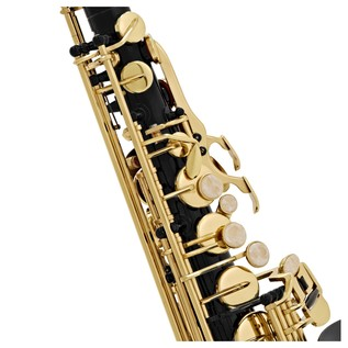 Elkhart 100AS Student Alto Saxophone, Black