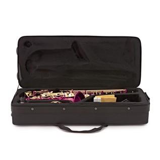 Elkhart 100AS Student Alto Saxophone, Pink