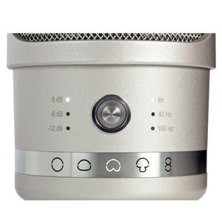Neumann TLM 107 Studio Microphone