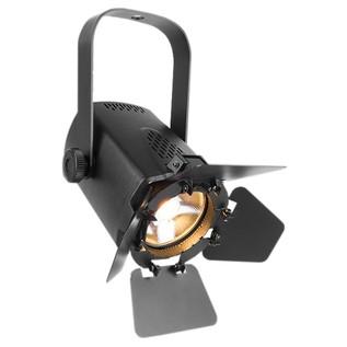 Chauvet EVE TF-20 LED Accent Luminaire