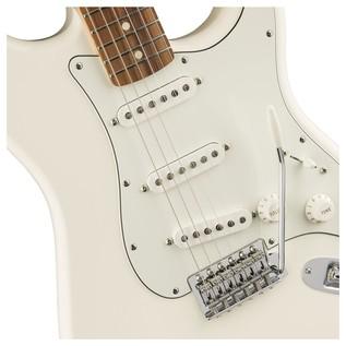 Fender Standard Stratocaster, Pau Ferro, Arctic White body detail