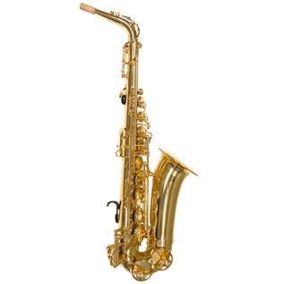 Trevor James Alphasax Eb Alto Saxophone, Gold