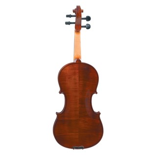 Gewa Allegro 4/4 Violin Back