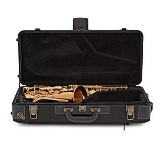 Yanagisawa AWO2 Alto Saxophone, Bronze
