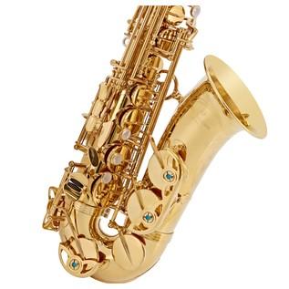 Yanagisawa AWO1U Alto Saxophone, Unlacquered