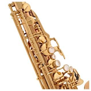 Yanagisawa AWO20 Alto Saxophone, Bronze