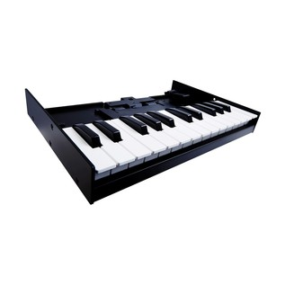 Roland K-25m Keyboard for Roland Boutique Series - Angled