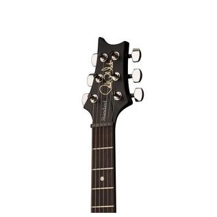 S2 Standard 24 Satin Electric Guitar (2017)