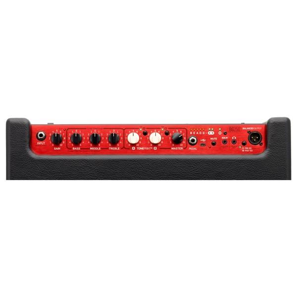 TC Electronic BG250-210 Bass Combo Amp Panel