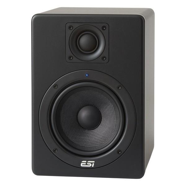 ESI aktiv 05 Monitors - Front