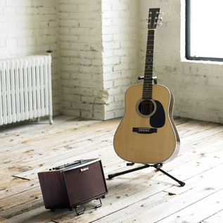 Roland AC33 Acoustic Amp - Rosewood
