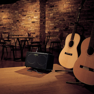 Roland AC60 Acoustic Amp - Rosewood secondary
