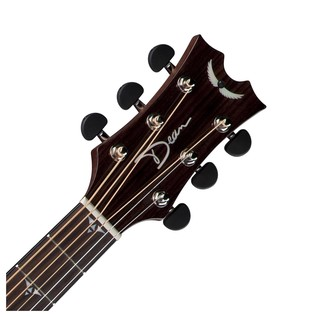 Dean Performer Plus Electro-Acoustic, Tobacco Sunburst Neck & Headstock View