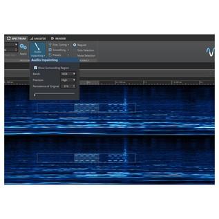 Steinberg Wavelab Pro 9.5 - In Painting