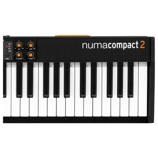 Studiologic Numa Compact 2 MIDI Keyboard With Built-In Speakers - Detail