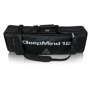 Behringer Deepmind 12 Waterproof Bag - Front