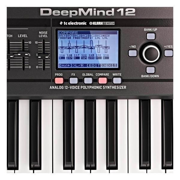 Behringer DeepMind 12 Synthesizer - Detail 2