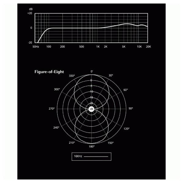 Aston Microphones Spirit Multi-Pattern Condenser Microphone - Pattern 3