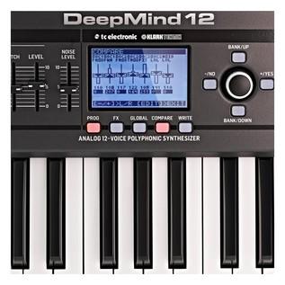 Behringer DeepMind 12 Synthesizer - Close Up 2