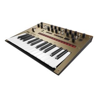 Monologue Synthesizer - Angled
