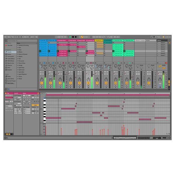 Ableton Live 10 Suite - Session View