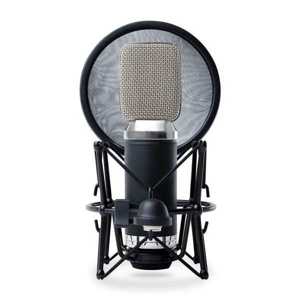 Marantz MPM3500R Ribbon Microphone - Front