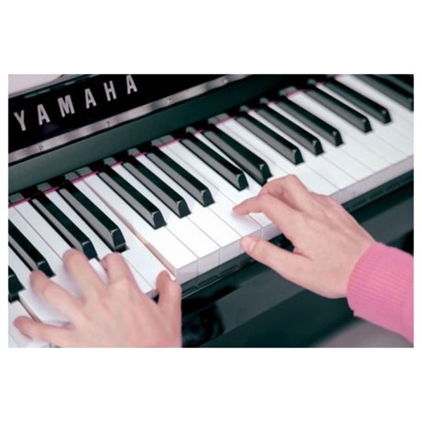 Yamaha N1 Avantgrand Digital Grand Piano