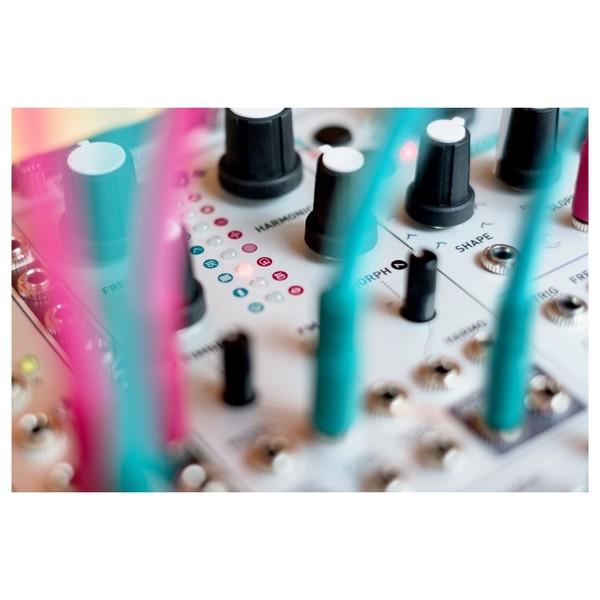 Mutable Instruments Plaits - Detail