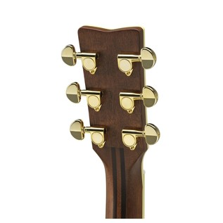 LL6ARE Electro Acoustic, Black